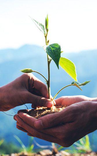 Responsabilidad Ambiental